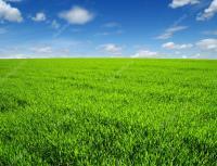 Продается 2,17  гектара земли Чебоксарах