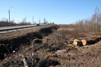 Вырубка деревьев кустарников выкорчевка