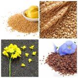 Куплю зерно
